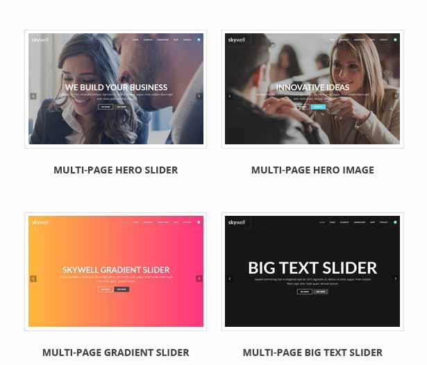 Skywell - MultiPurpose Adobe Muse Template - 20